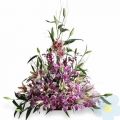 Arrangement of orchids Laelia